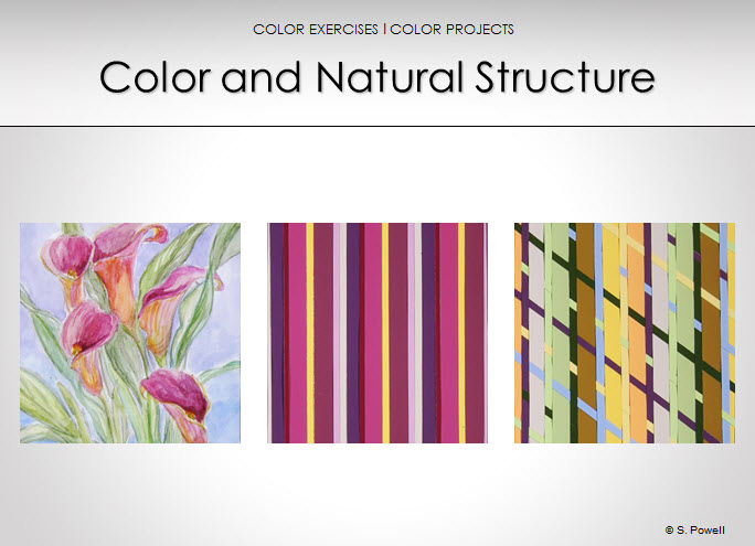 alice chu color and natural structure