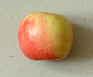 Paul Foxton's Color Mixing Example: an Apple