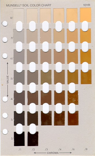 How do you like your coffee color munsell color system color
