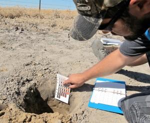 Identifying-Soil-Color
