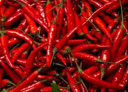 A pile of hot red chili peppers.