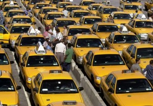 Rows of yellow taxi cabs.