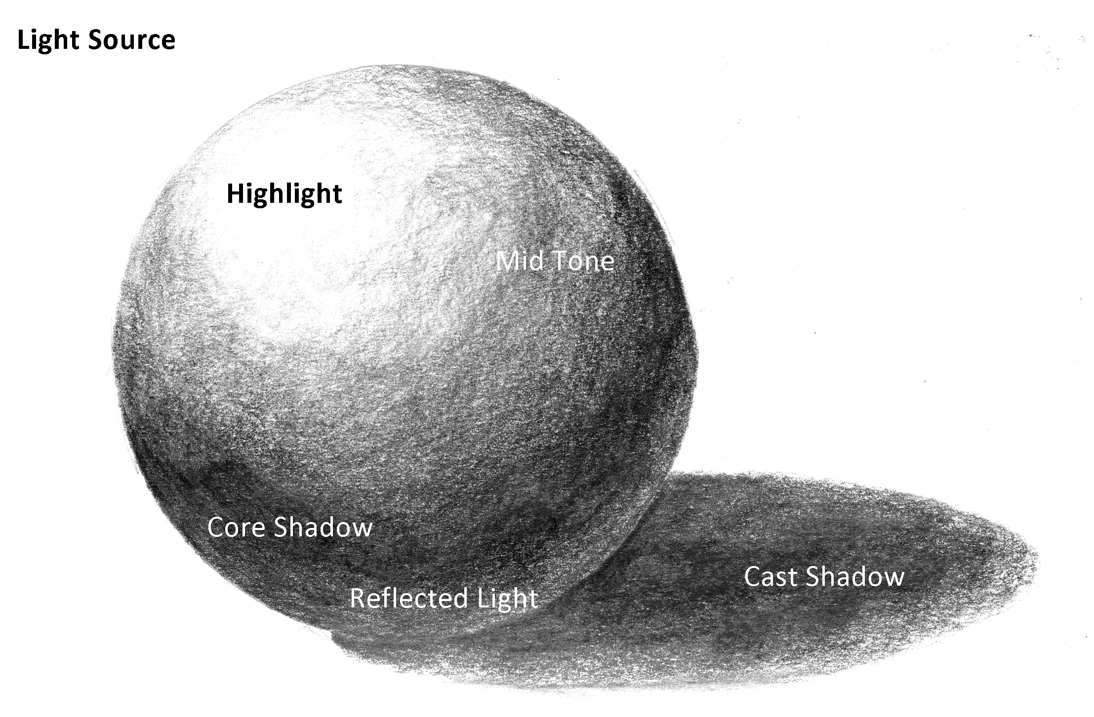 Drawing of a sphere from RachelCarter.ca showing highlight, mid tone, core shadow, reflected light and cast shadow.