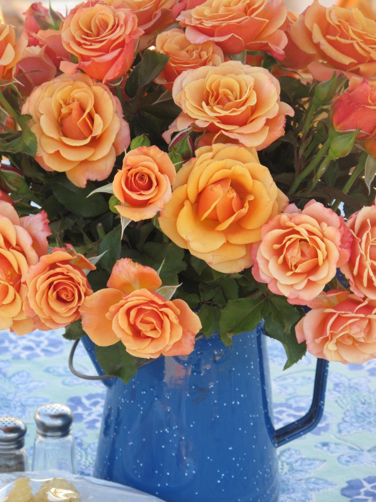 Orange roses in a blue vase