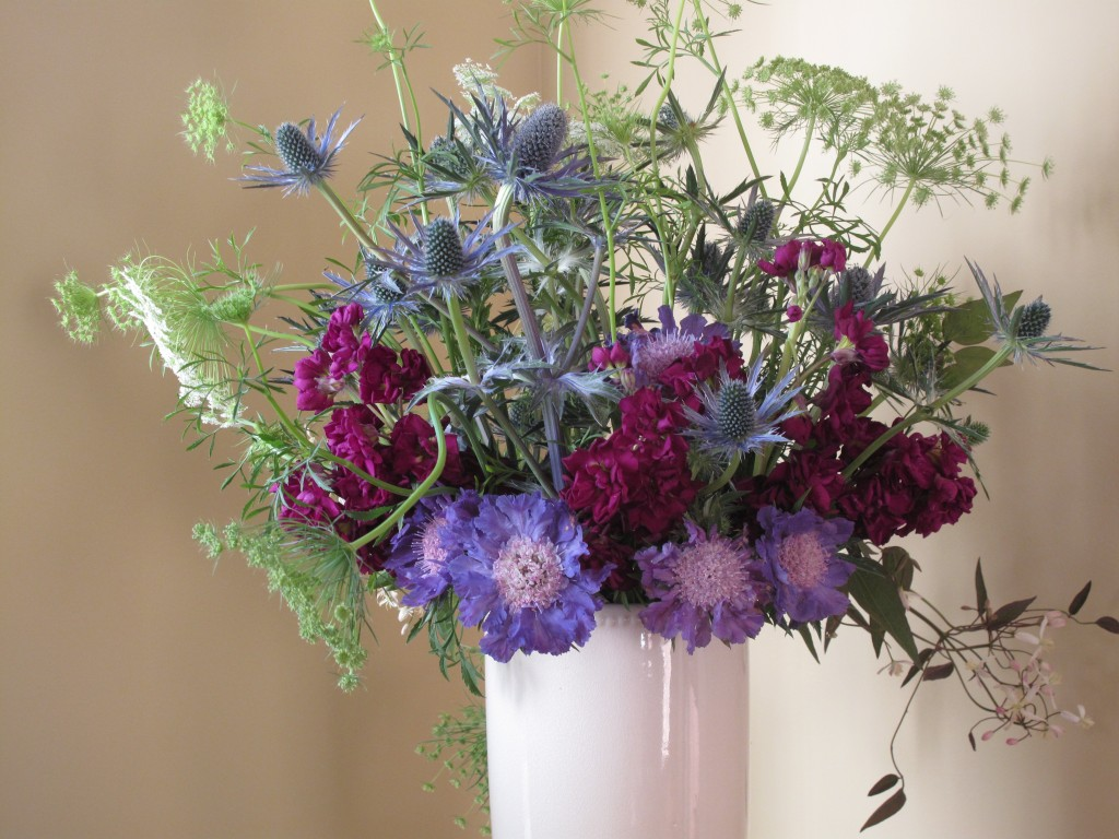 An flower arrangement of periwinkled scabiosa, Queen Anne's lace, sea holly in a white vase