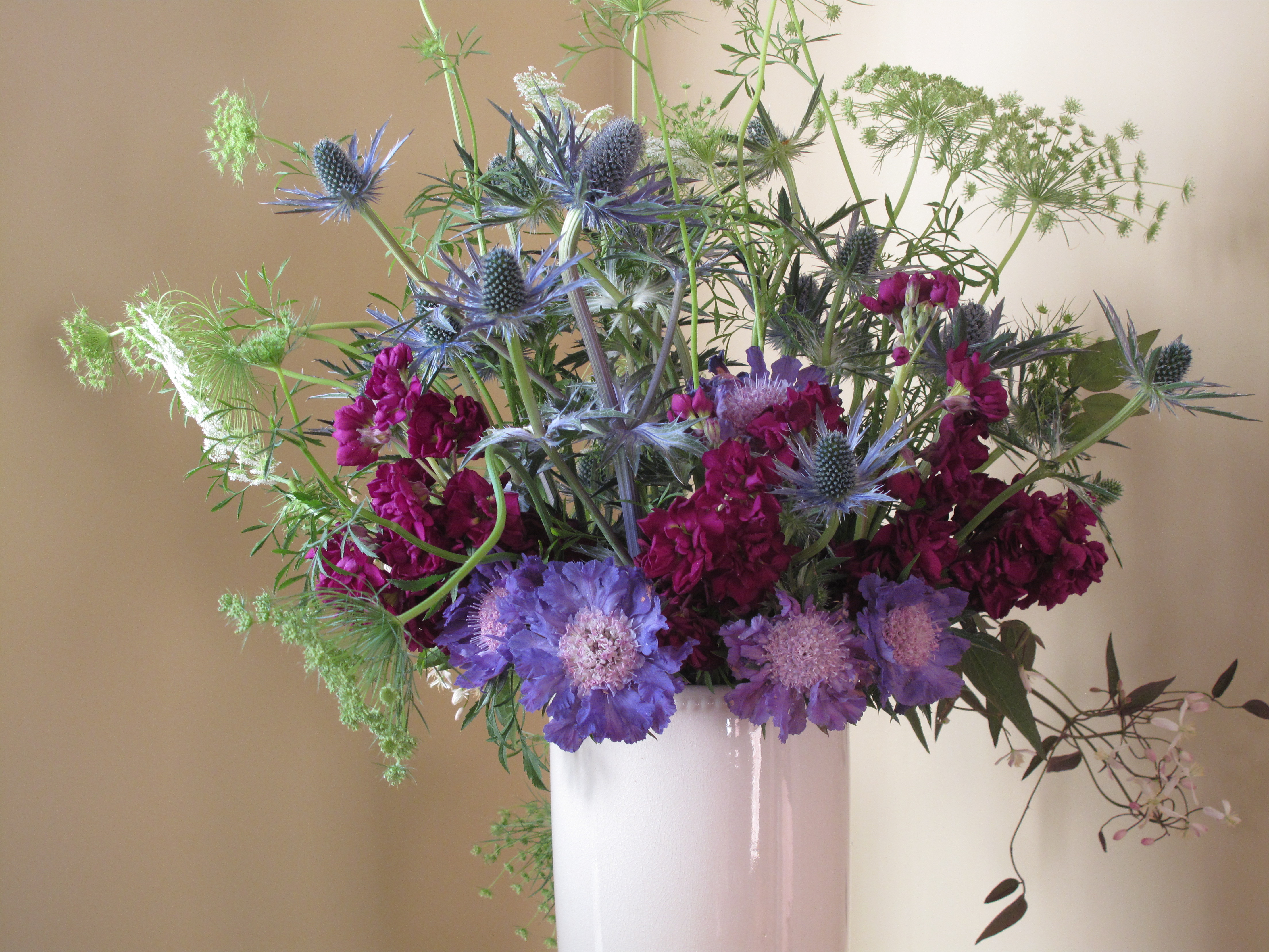 flower color wheel scabiosa holly munsell color system