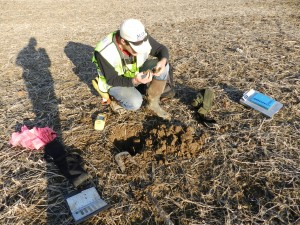 Scientist performing wetland construction soil classification out in the field.