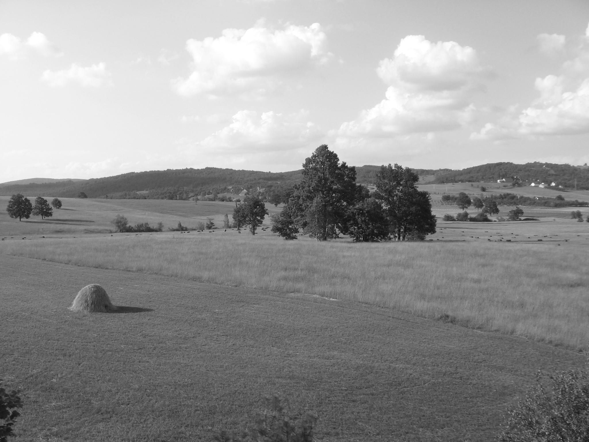 View of mountain fields in grayscale.