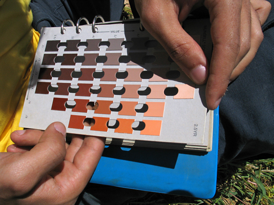 A students using a Munsell Soil Chart  to check the color of the soil formation