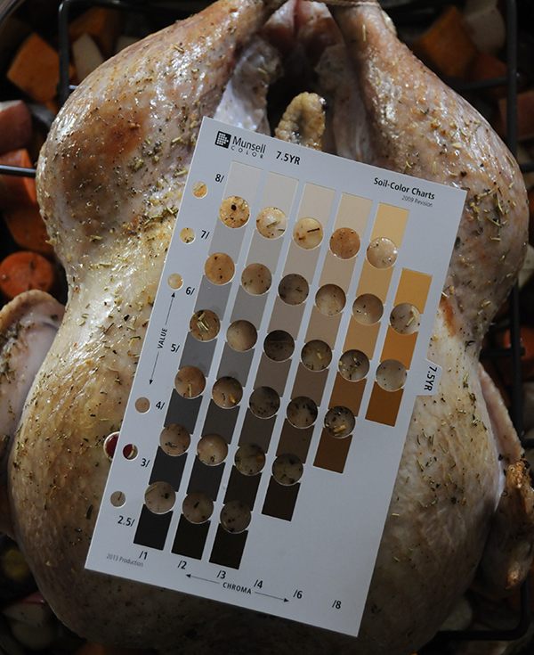 Turkey skin color after 1 hr of cooking time using the Munsell Soil Color Chart