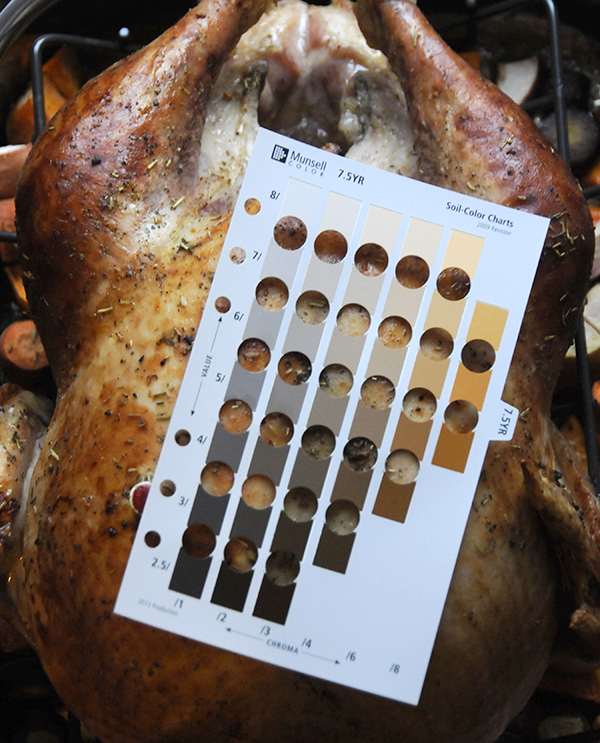 Fully cooked turkey skin color using the Munsell Soil Color Chart