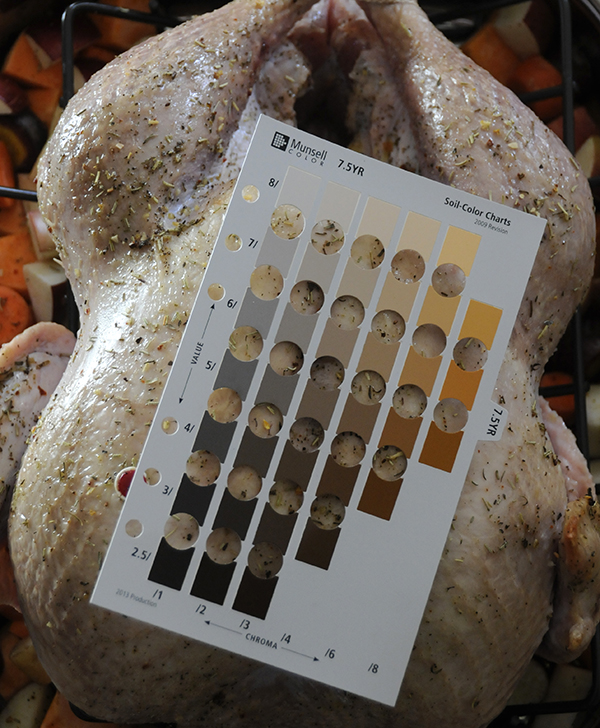 The color of turkey skin after 15 minutes of cooking using the Munsell Soil Color Chart