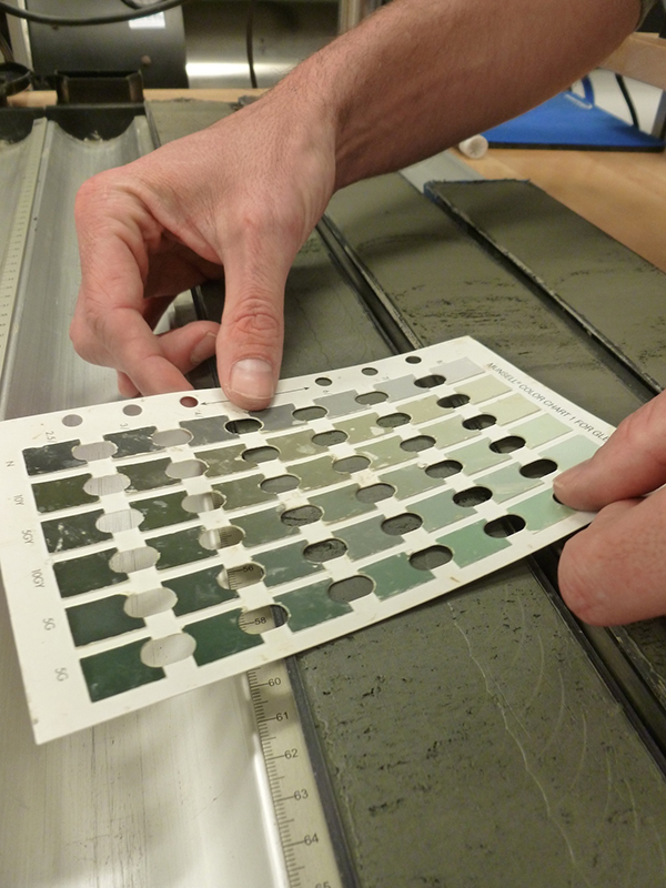 A sedimentologist holds up the Munsell color chart to a mud core sample from the ocean