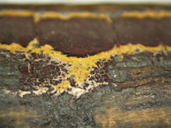 Close-up of the window trim from Lincoln's funeral train car showing yellows and maroon