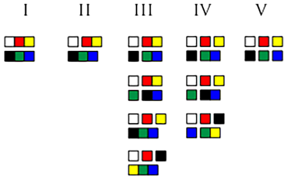A chart showing the evolution of color naming groupings