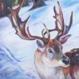 Tetrachromat Artic Reindeer Concetta Antico