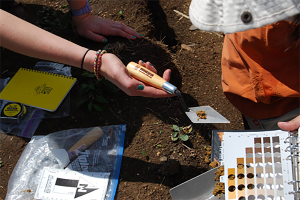 In the field measuring soil color with Munsell charts