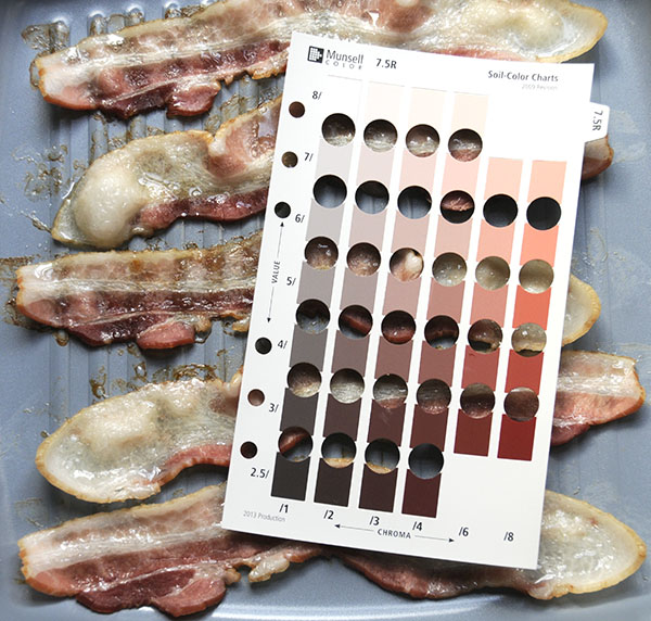 Bacon Color from Chewy to Extra Crispy | Munsell Color