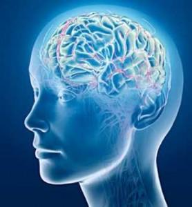 Human brain wave function illustration.