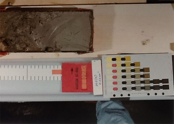 A split marine core soil sample showing Munsell notation 5Y