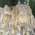 The Florissant Fossil Beds National Monument in Colorado where shale, volcanic ash and mudstone make up the soils