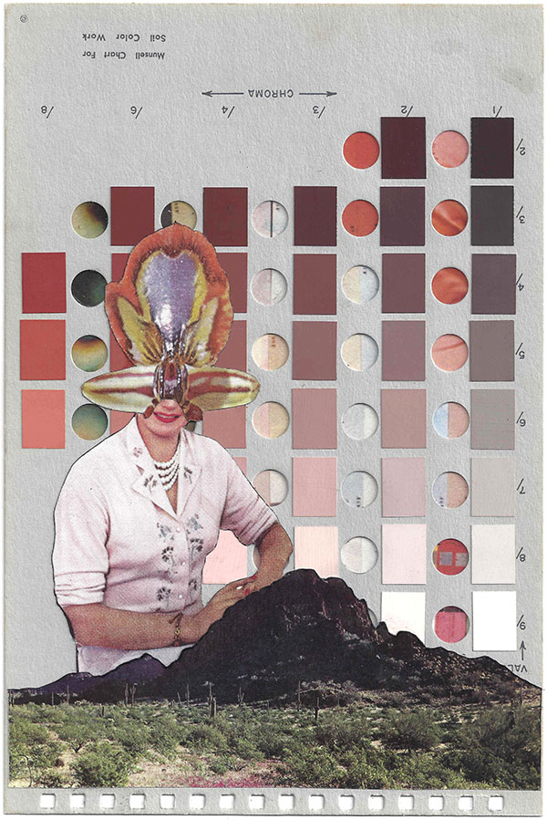 A collage by Chad Yenney featuring a Munsell color chart a bee and a women