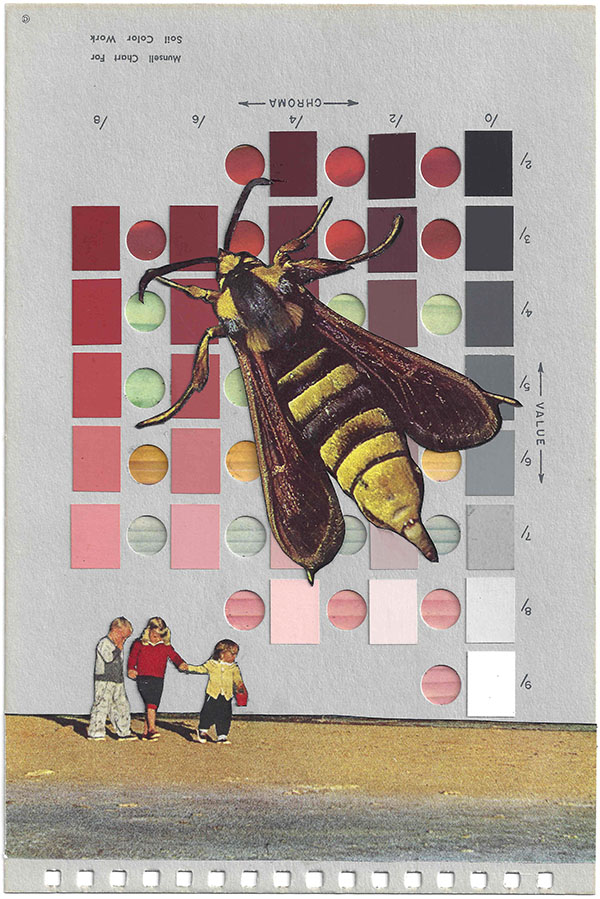 A collage by Chad Yenney featuring a Munsell color chart, children and a giant bee