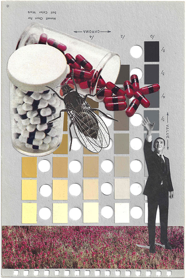 A collage by Chad Yenney featuring a Munsell color chart, pills and a man reaching for them