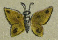 A yellow and black butterfly in crayon from Plate 2 of A Color Notation